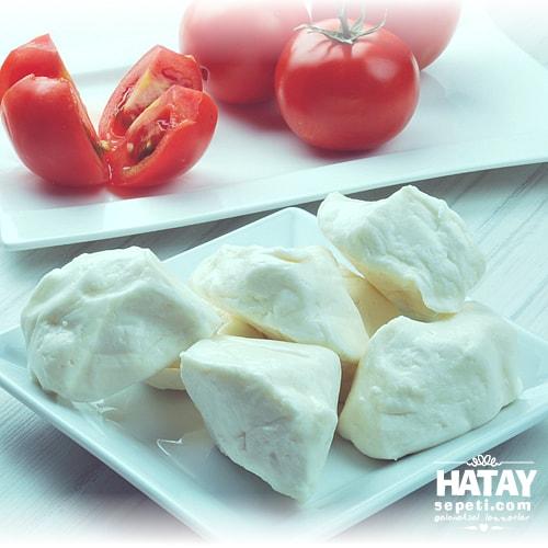 Sıkma İnek Sütü Peyniri fotoğrafı